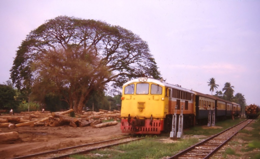Old locomotive and lovely tree, only the later is gone. Saraphi 15.04.1987